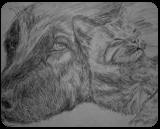 Pals, Drawings / Sketch, Minimalism, Animals,Inspirational,Still Life, Ink, By Matthew Scott Lannholm