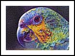 Parrot, Digital Art / Computer Art, Realism, Animals,Figurative,Nature,Wildlife, Digital, By Monica Amorim Gutmann