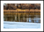 Peaceful Living, Photography, Fine Art, Nature, Photography: Stretched Canvas Print, By Jim Stewart
