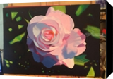 Pink Rose, Paintings, Fine Art, Botanical, Oil, By Defined by Art With Lauren