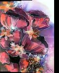 Poppy, Paintings, Realism, Decorative, Mixed, By Maria Hristova Koleva