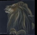 Proud lion, Paintings, Fine Art, Animals, Oil,Painting, By Claudia Luethi alias Abdelghafar