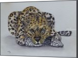 Prowling Leopard, Paintings, Fine Art,Realism, Animals, Painting,Watercolor, By Kelly A Mills
