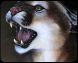 Puma, Paintings, Fine Art, Wildlife, Acrylic, By Jon Quinn