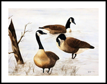 Quite Interlude, Paintings, Realism, Animals, Watercolor, By William Clark