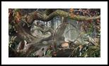 Rangers, Digital Art / Computer Art,Photography, Fine Art,Surrealism, Animals,Botanical,Floral,Landscape,Nature, Digital,Photography: Photographic Print, By Jesper Krijgsman