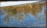 Reflection, Photography, Fine Art, Nature, Photography: Premium Print, By Jim Stewart