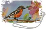 Robin in spring blossom, Paintings, Fine Art, Animals,Wildlife, Acrylic, By Susan Willemse