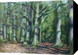 Royal estate 'De Horsten' – 02-04-18, Drawings / Sketch, Fine Art,Impressionism,Realism, Composition,Inspirational,Landscape,Nature, Pencil, By Corne Akkers