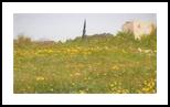 Sharon Park 8, Digital Art / Computer Art, Fine Art, Landscape, Digital, By BENARY  IMAGE