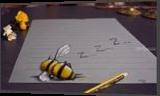 SLEEPING BEE /funny 3D drawing, Drawings / Sketch, Realism, 3-D, Oil, By Stefan Pabst