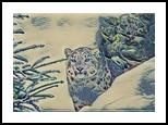 Snow Leopard, Digital Art / Computer Art, Realism, Animals,Figurative,Nature,Wildlife, Digital, By Monica Amorim Gutmann
