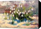 Snowdrops, Paintings, Expressionism,Fine Art,Impressionism, Botanical,Floral,Seascape, Canvas,Oil,Painting, By Olha   Vyacheslavovna Darchuk