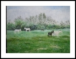 Spanish Grazing/ El Campo, Paintings, Fine Art, Landscape, Oil, By Martine Norman