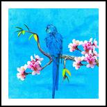 Spring bird and flower, Digital Art / Computer Art,Poster, Fine Art, Botanical, Canvas,Digital, By Ata Alishahi