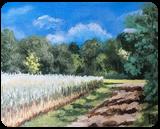Spring wheat field, Paintings, Fine Art,Impressionism, Botanical,Daily Life,Land Art,Landscape, Canvas, By Pamela D Cauley