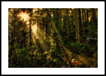 Stairway to Heaven, Photography, Photorealism, Conceptual,Landscape, Photography: Premium Print, By Mike DeCesare