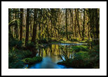 Still Pond, Photography, Photorealism, Landscape, Photography: Premium Print, By Mike DeCesare