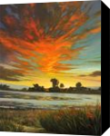 Sunset at the Bolinas Lagoon, Paintings, Impressionism, Landscape, Canvas,Oil, By Mason Mansung Kang
