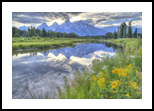 Teton Reflection at Schwabacher Landing, Photography, Fine Art, Landscape, Photography: Photographic Print, By Carol P. Milazzo DiRenzo