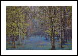 The Bluebell Place, Paintings, Impressionism, Landscape, Oil, By Sean Conlon