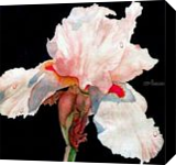 The Heartbreaker, Paintings, Realism, Floral, Painting, By William Clark