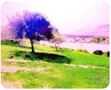 The Kishon River 2, Digital Art / Computer Art, Fine Art, Landscape, Digital, By BENARY  IMAGE