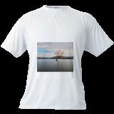 The Lake Wanaka and the tree., Photography, Photorealism, Landscape,Nature, Photography: Photographic Print, By Anupam Hatui