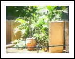The Raanana Park 7, Digital Art / Computer Art, Fine Art, Landscape, Digital, By BENARY  IMAGE