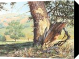 The Survival, Paintings, Impressionism, Botanical,Landscape, Canvas,Oil, By Mason Mansung Kang