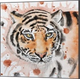 Tiger, Paintings, Realism, Animals, Watercolor, By Ira Olegovna Samoilina