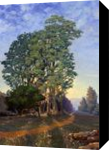 Trees at Sunset, Paintings, Impressionism, Botanical,Landscape, Canvas,Oil, By Mason Mansung Kang