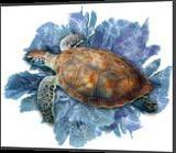 Turtle in the seafans, Digital Art / Computer Art, Impressionism, Animals, Photography: Premium Print, By Glenn Lathi