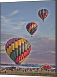 Up, Up and Away, Photography, Fine Art, Happenings, Photography: Photographic Print, By Carol P. Milazzo DiRenzo