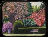 Veterans Park Spring, Paintings, Impressionism, Landscape, Oil,Painting, By Richard John Nowak