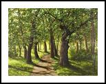 Walk in the oak Park, Paintings, Realism,Romanticism, Botanical,Landscape, Canvas,Oil, By Nataliya KyrkachAntonenko
