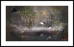 Water Reflection, Digital Art / Computer Art,Photography, Fine Art,Surrealism, Animals,Botanical,Floral,Landscape,Nature, Digital,Photography: Photographic Print, By Jesper Krijgsman