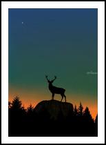 Wild Nature - Dusk, Digital Art / Computer Art, Pop Art, Animals,Figurative,Landscape,Nature, Digital, By Monica Amorim Gutmann