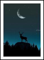 Wild Nature - Nocturnal, Digital Art / Computer Art, Pop Art, Animals,Figurative,Landscape,Nature, Digital, By Monica Amorim Gutmann