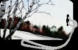 Winter Birches, Paintings, Fine Art, Landscape, Watercolor, By james Allen lagasse