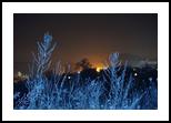 winter landscape, Photography, Photorealism,Realism, Land Art,Landscape, Photography: Photographic Print, By yevgeniya petrenko