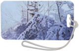 Winterior, Paintings, Fine Art,Photorealism,Realism, Landscape,Nature, Canvas,Oil, By Dejan Trajkovic
