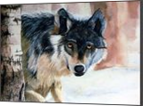 Wolf, Paintings, Realism, Animals, Watercolor, By William Clark