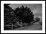 Wyoming Country Road In Black And White, Photography, Fine Art, Landscape, Photography: Photographic Print, By Jim Stewart