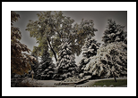 Wyoming Winter Wonderland 1d, Digital Art / Computer Art, Fine Art, Landscape, Photography: Photographic Print, By Jim Stewart