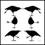 Yoga Bird, Digital Art / Computer Art, Fine Art, Animals,Conceptual,Nature,Wildlife, Digital, By Shanee Buxton
