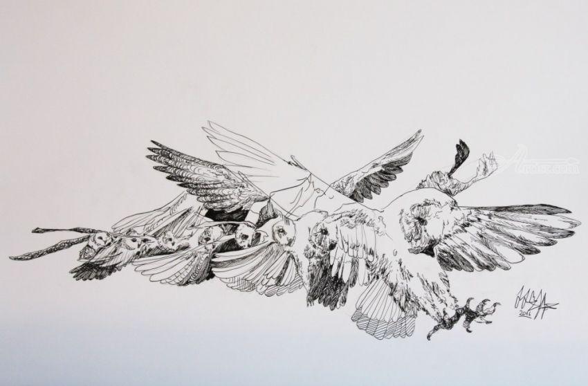 Line Art Animals Tattoo : Flight decorative arts drawings sketch illustration tattoo by