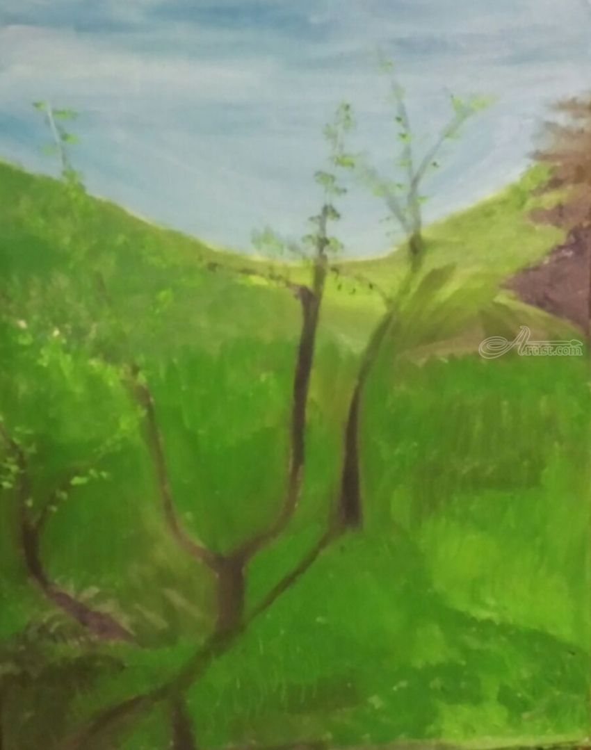 Apple Trees, Paintings, Impressionism, Landscape, Oil, By MD Meiser