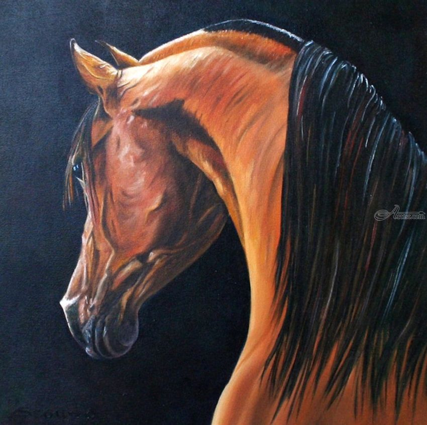 Arabian #2, Paintings, Fine Art, Realism, Animals, Portrait, Wildlife, Canvas, By Rick Seguso