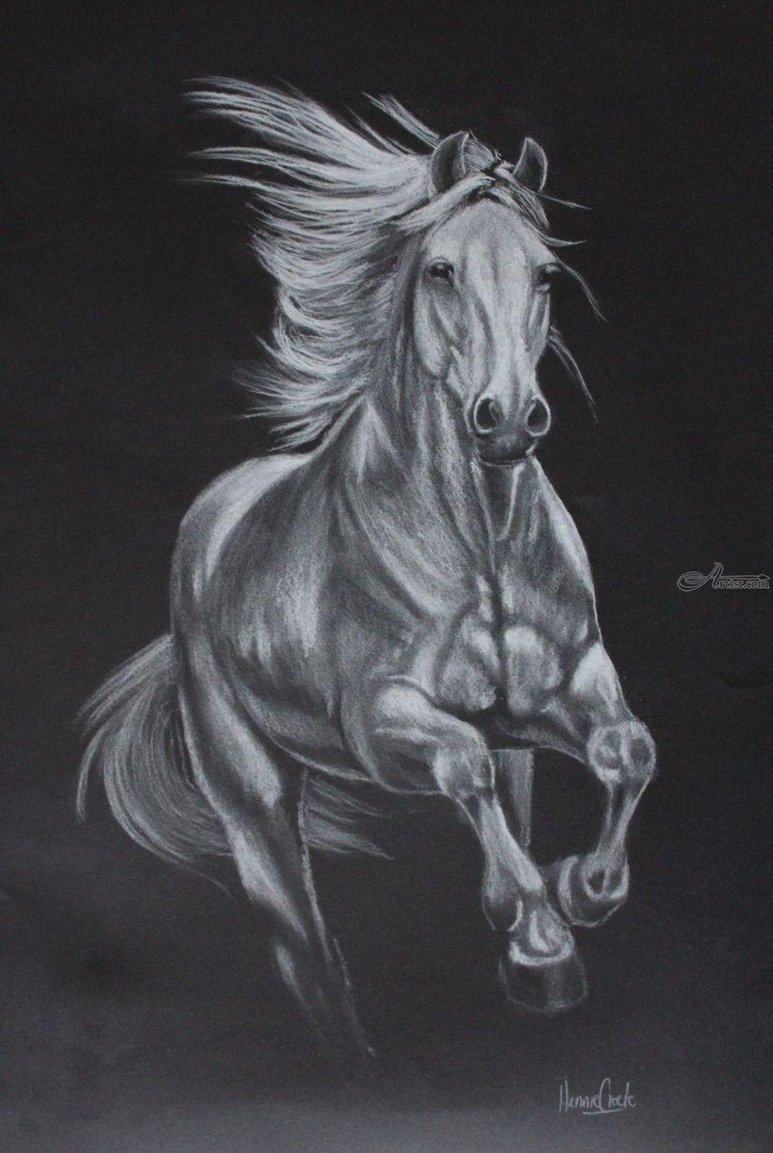Argento drawings sketch by hennie cloete artist com